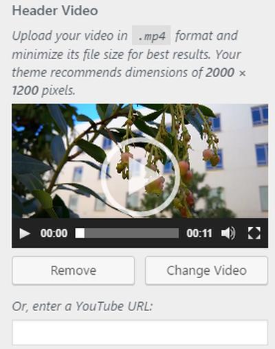 Video Header Support in WordPress 4.7